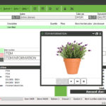 POS-Screen_potted-plant