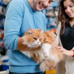 pet-store-loyalty